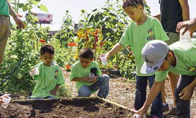 Farm Visit in Philadelphia   Kids learning on the farm   Novick Urban Farm