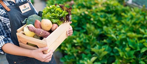 Farm Visit in Philadelphia   Holding a basket of vegetables   Novick Urban Farm